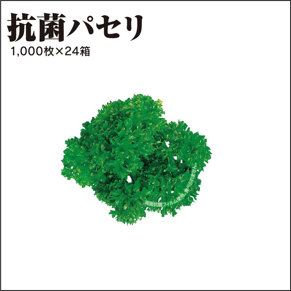 抗菌パセリ